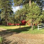 Majestic Dude Ranch Foto