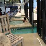 Foto de The Reef at South Beach