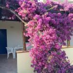 Foto de Villaggio Vascellero Club Resort