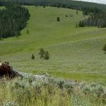 Foto de Covered Wagon Ranch
