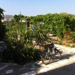 Photo de Paros Apartments