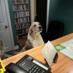 Reception assistance :)