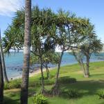 Foto de Maui Beach Hotel