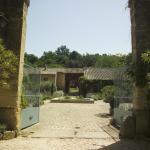 The central courtyard garden