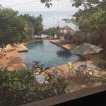 Casa de Tortugas Foto