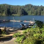 Lake Mercer Resort from Cabin 9