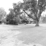 Zdjęcie 1853476