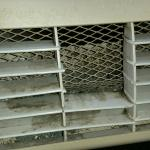 Mold in A/C unit.