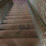Gross stains throughout the  halls and stairways