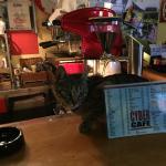 Foto Cyber Cafe Pula