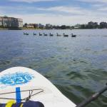 Stand-up paddlesurfen