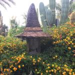 Giardini Ravino giornata stupenda immersa nella natura
