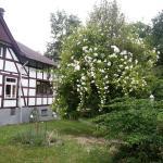 Foto de Altes Berghaus Hotel