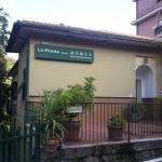 Photo of Pineta dell'Iguana
