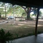 Vista desde la habitación, la pampa Guanacasteca