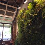 Plant wall and open air walls.