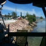 view out of the shack. Piles of conch shells