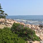 Hike the trails in nearby Acadia National Park.