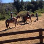 My family of 4 loved this adventure!!!! Kathleen was a sweetheart and so were the horses.