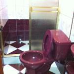 Baños , con un buen servicio de limpieza .