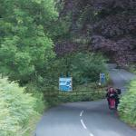 the adjoining road