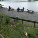 picnic benches by the cafe