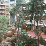 Embassy Suites by Hilton Pittsburgh - International Airport Foto