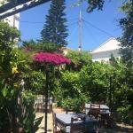 Πανέμορφος κήπος της ταβέρνας