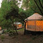 Yurt Village Night