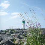 Rotary beach lighthouse Wellington