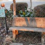 Romantic corner in the wonderland garden
