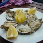 Delicious fresh oysters