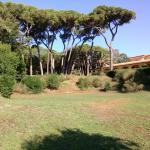 Villa La Pineta Foto