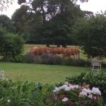 Even the cattle are beautiful and enhance the garden
