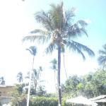 Foto de Florida Inn Praia Hotel