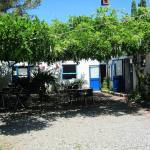 Photo of Club Corsicana
