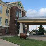 Hereford Tx Holiday Inn