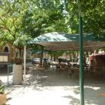 Shaded dining area