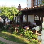 Outdoor terrace and garden