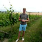 Alex, the youngest (and probably most knowledgeable) winemaker in the UK.