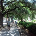 Foto de Quality Inn Heart of Savannah