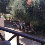 Foto di Cesme Inn Garden Resort