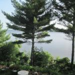 view of Lake Wissota from the deck