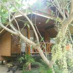 Foto de Palm Leaf Resort