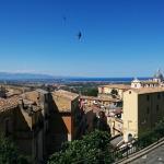 Foto di Porta Librandi