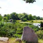Muss man gesehen haben > Landschaftspark Wörlitz >ein Traum in Grün