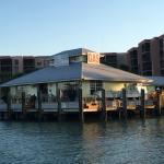 Photo de Pelican Pier Marco island