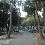 Vialetto campeggio
