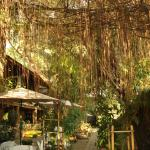 Photo of Hotel California Dili
