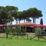 The bar / restaurant